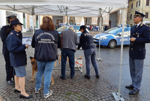 Contro la violenza sulle donne, eventi a Senigallia fino all'11 dicembre