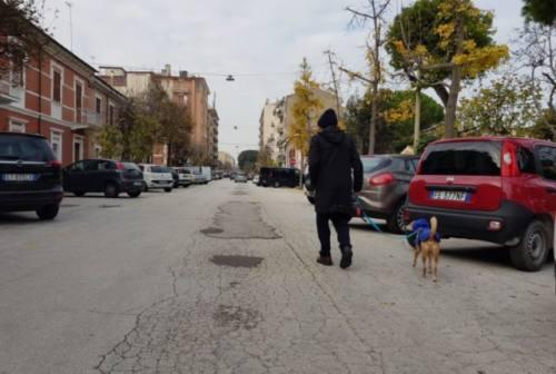 Falconara: al via nuovi asfalti in via Bixio e via Roma