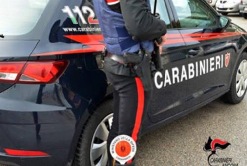 Anfore, urne e dipinti: nel 2019 recuperato dai Carabinieri un patrimonio di 2,5 milioni