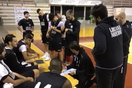 Coach Rajola carica il Campetto per il derby di Senigallia