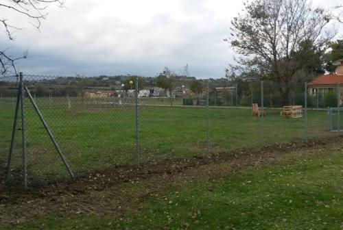 Verde urbano, Senigallia Resistente: «Il parco della Cesanella va completato»