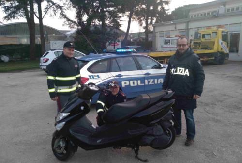 Pesaro, preso il pirata della strada di via degli Eroi dopo giorni di indagini