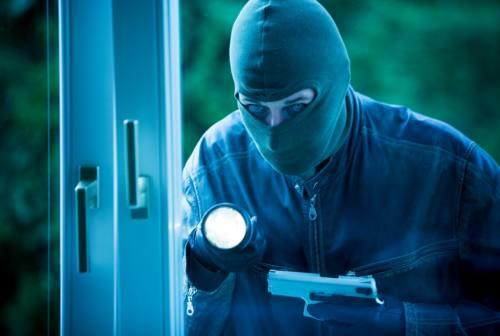 Gradara, furti in tre aziende: i ladri rubano spicci dai distributori di merendine