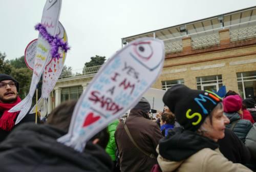 Salvini nelle Marche, le Sardine: «Pensi a stare in Senato invece di mangiare olive ascolane»