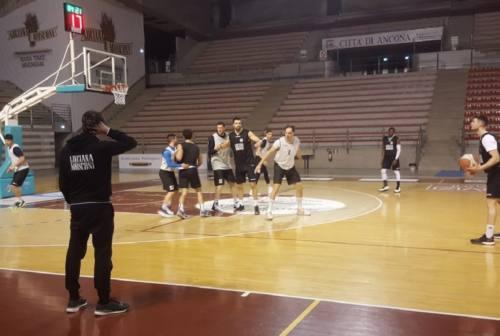 Basket, il Campetto Ancona mantiene il ritmo gara con la Rossella Civitanova