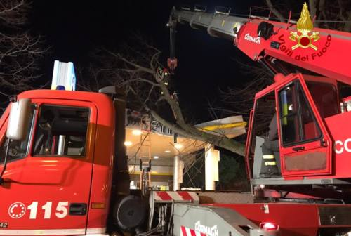 Sud delle Marche devastato dal forte vento: 170 interventi dei vigili del fuoco