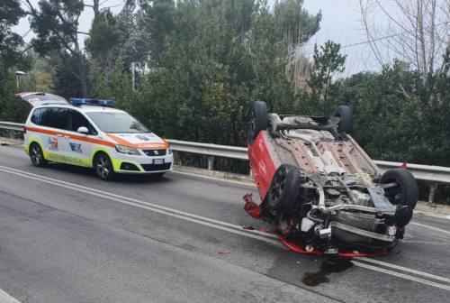 Posatora, evita un gatto ma perde il controllo dell'auto: ferito 41enne