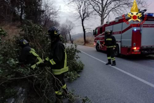 Forte vento nel Maceratese, camion vela si ribalta: paura per il conducente