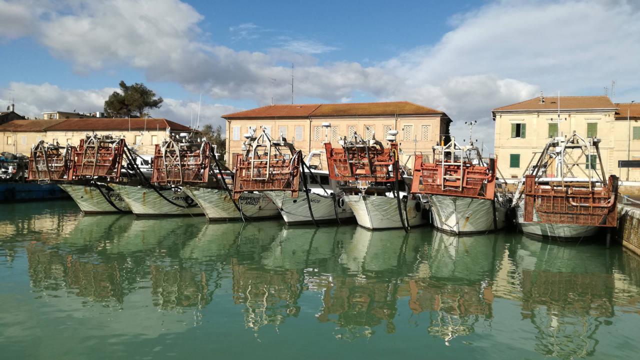 Le imbarcazioni della pesca e le casette di piazzale Bixio al porto di Senigallia