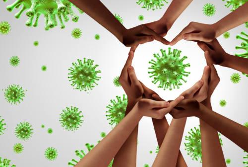 Senigallia e dintorni, l'altra arma contro il Coronavirus è la solidarietà