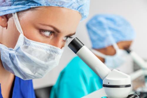 Coronavirus: da Ancona all'ospedale Sacco di Milano kit di test diagnostici rapidi