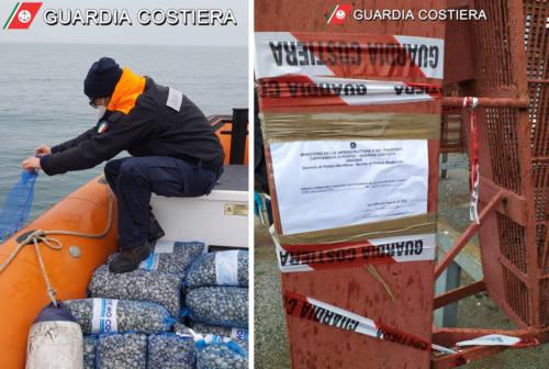 Pesca irregolare, la Guardia Costiera sequestra 9 quintali di vongole