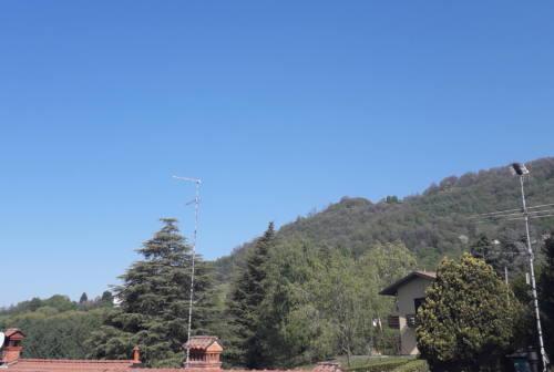 Un pino si agita al vento, sembra volermi salutare e farmi compagnia