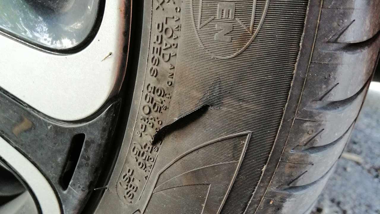 Lo squarcio a una gomma di un'auto di una volontaria dell'associazione gattofili anonimi senigalliese