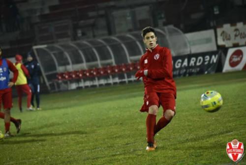 Calcio, Vis Pesaro e Fano attendono le decisioni della Lega Pro