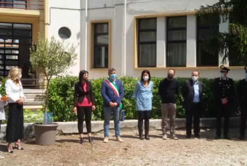 Fano, alla scuola primaria Corridoni un albero per ricordare Giovanni Falcone