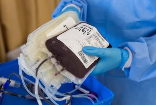 Plasma iperimmune, il professor Giacometti: «In settimana i primi donatori»