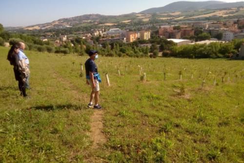 """Osimo Stazione, si lavora per un percorso ciclo pedonabile al """"Mancinelli"""""""