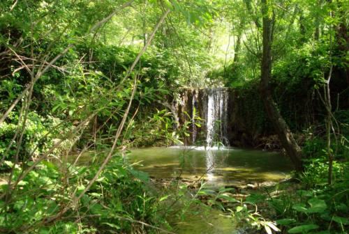 Il sentiero del Granchio Nero, tesoro nascosto di Castelplanio