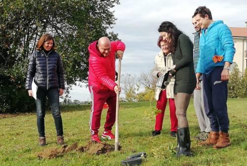 """Fotovoltaico e alberi nei parchi: così il futuro di Osimo è """"green"""""""