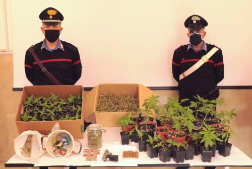 'Ndrangheta, maxi blitz dei carabinieri in Lombardia: un arresto nel Maceratese