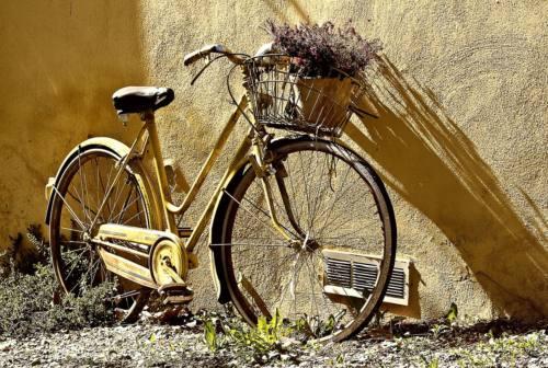 Bicicletta,  Legambiente Marche: «Il cicloturismo protagonista della ripresa». L'iniziativa in Vallesina