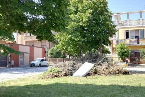 Senigallia, sfalci, sedie, passeggini e materassi: il giardino della scuola ospita di tutto
