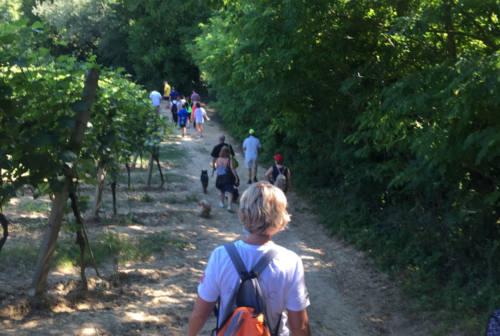 Castelplanio, alla scoperta del Sentiero del Granchio Nero
