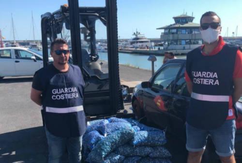 Fano, controlli della Guardia Costiera: 16 mila euro di verbali. Sequestrati 350 kg di vongole