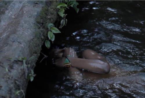 Ka – Nuovo Immaginario Migrante, un occhio anconetano sull'Amazzonia