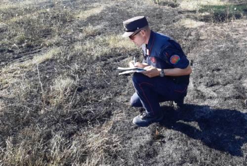 Cinque ettari di vegetazione bruciata: individuato il responsabile dell'incendio a San Paterniano di Osimo