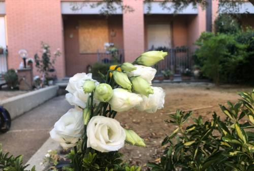 Omicidio di Jesi, venerdì i funerali di Fiorella Scarponi. La famiglia propone donazioni per lo Iom