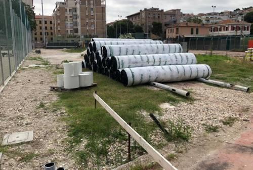 Stadio Dorico, scontro in consiglio tra Diomedi (M5S) e l'assessore Guidotti