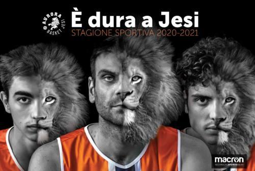Aurora basket, al via la campagna abbonamenti «È dura a Jesi»