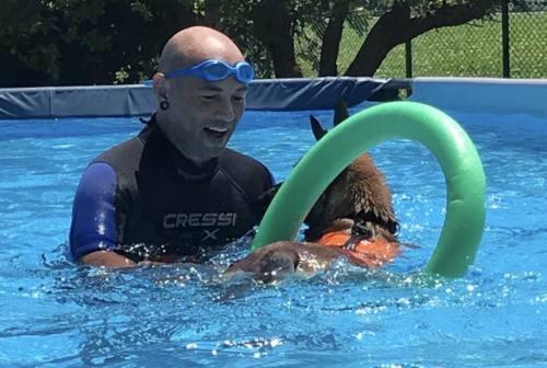 Tuffi, nuotate e disciplina: a Chiaravalle la prima piscina per cani delle Marche