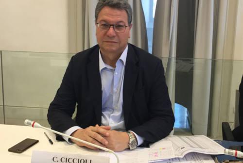 Regionali Marche 2020, liste in dirittura d'arrivo per Fratelli d'Italia. Ciccioli: «Ci aspettiamo un buon risultato»