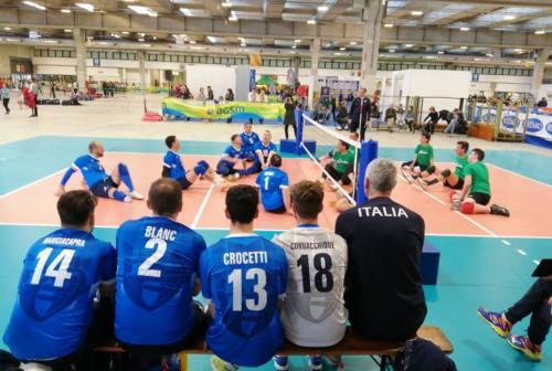 Il sitting volley italiano parla marchigiano. Lele Fracascia è il coach della Nazionale maschile