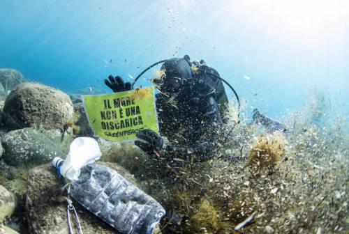 Come sta il mare dopo il lockdown? Parte il tour di Greenpeace: all'appello anche l'UnivPm