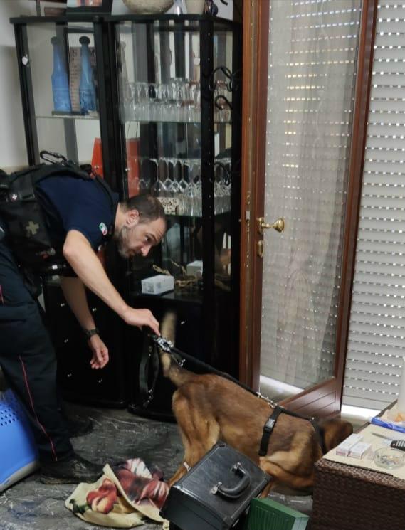 Lotta al traffico di cocaina: il blitz dei carabinieri