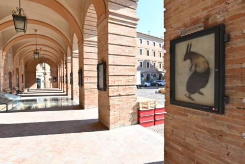 Pop up festival, il centro di Osimo è un'opera d'arte a cielo aperto