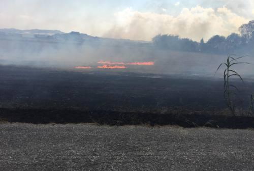 Falconara, incendio di sterpaglie lambisce un'abitazione