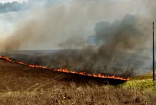 Jesi, brucia Gangalia Alta: in azione tre squadre di Vigili del fuoco