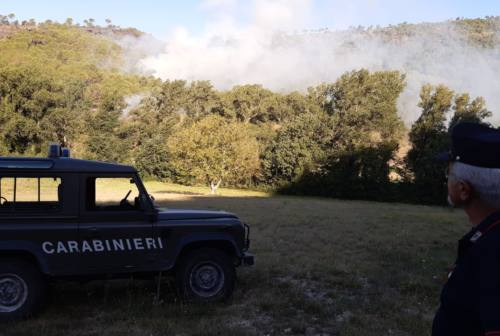 Genga: incendio divora 19 ettari di pineta e bosco di latifoglie