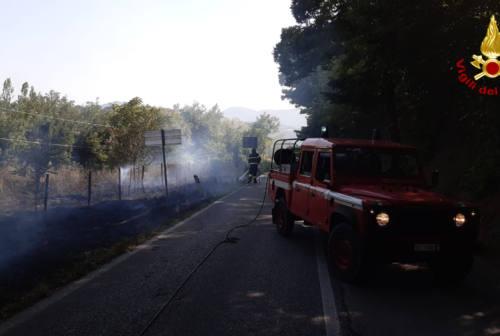 Scintille dalla linea ferroviaria: a fuoco mille metri quadrati di sterpaglie tra Serra San Quirico e Mergo