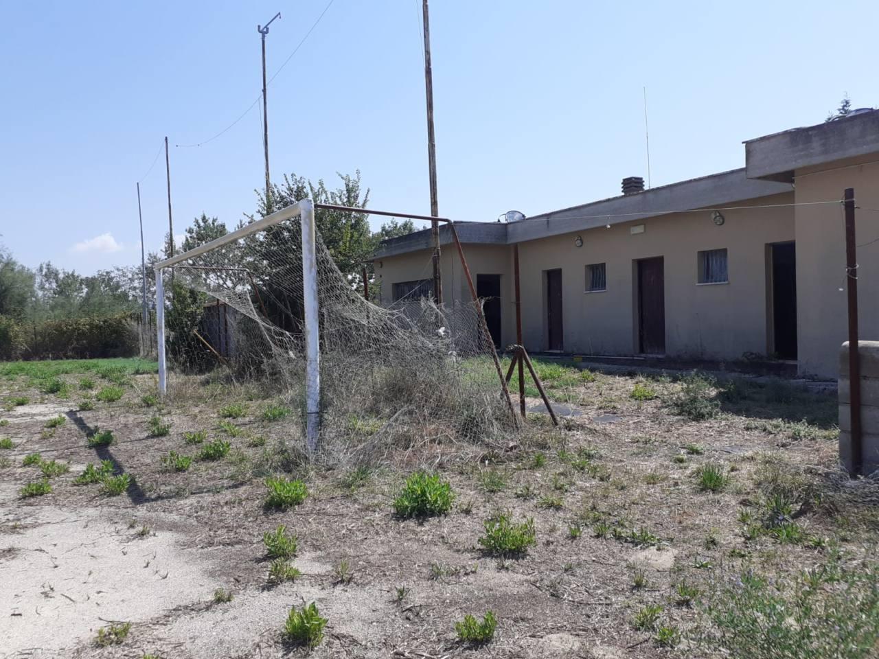 Le condizioni dell'impianto da calcio di via Mazzangrugno, candidato a sede dell'oasi felina
