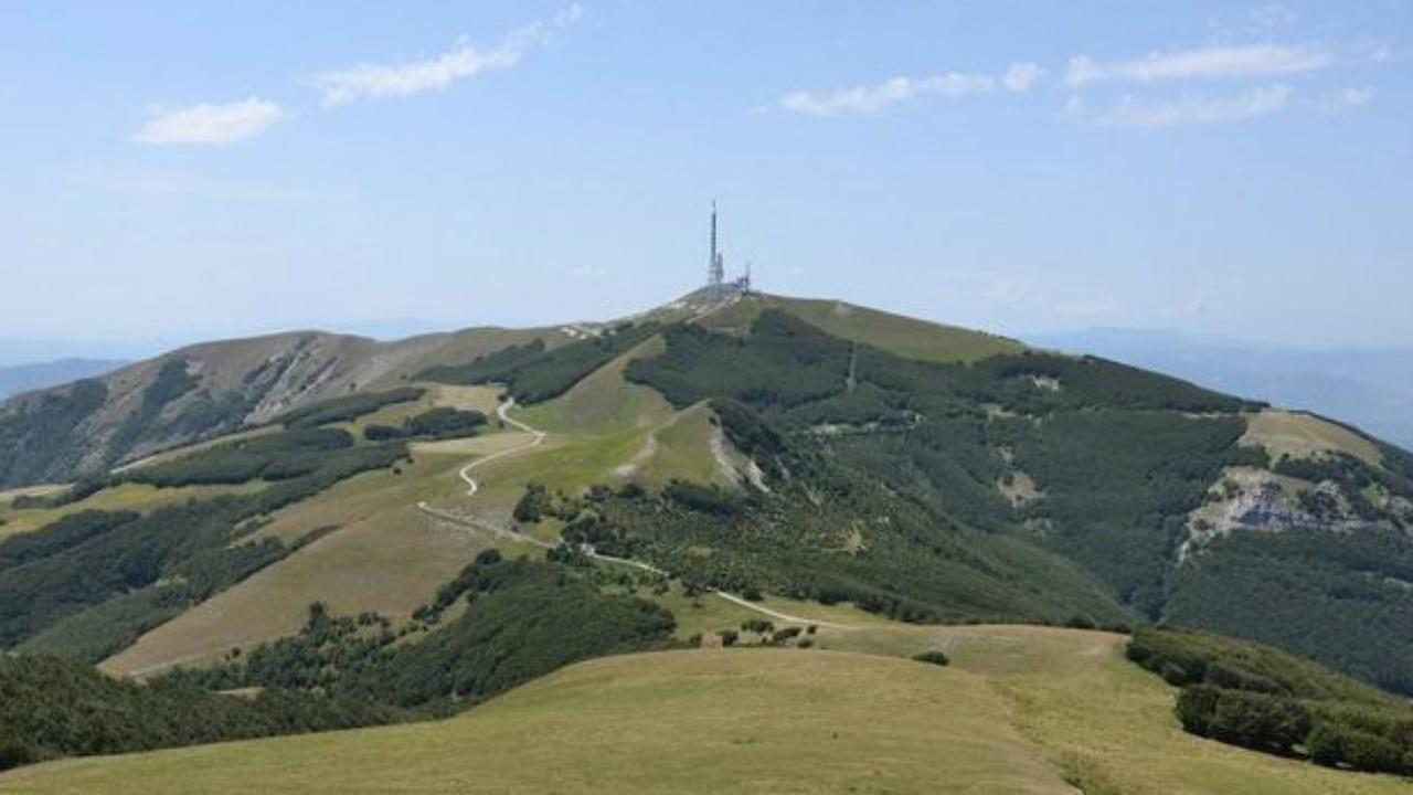 monte Nerone
