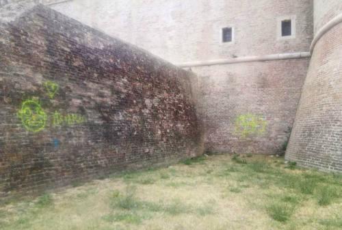 Imbrattate le mura della Rocca di Senigallia