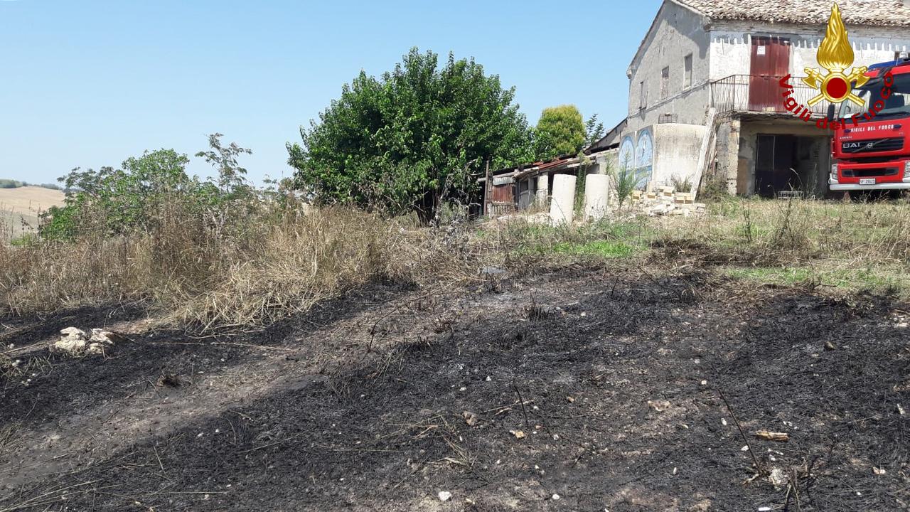 Il terreno a Osimo dove si è verificato un rogo