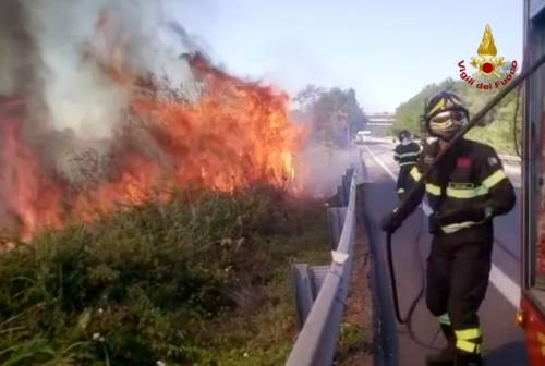 Fano, incendio divampa in un campo agricolo e lambisce due abitazioni