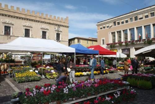Pesaro, la mostra dei fiori in piazza si farà. Vigili urbani a controllare il rispetto delle norme anti-Covid
